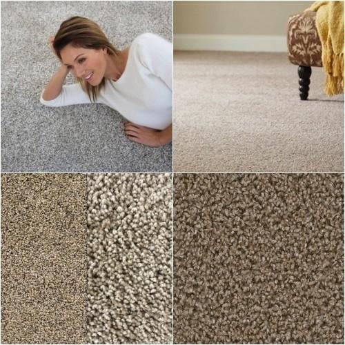 Actual Carpet Samples