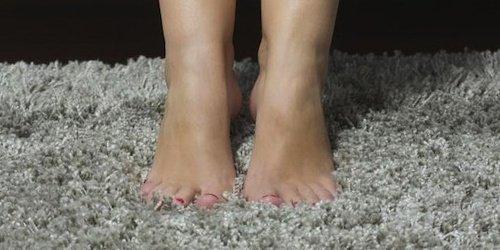 Low maintenance carpet utah